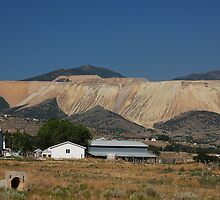Who Says Mountains Don't Come In Color by John Wilchek