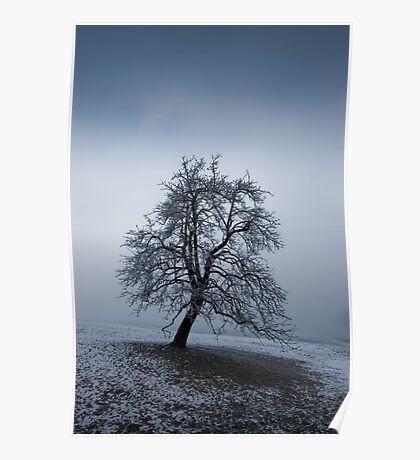 moody tree Poster
