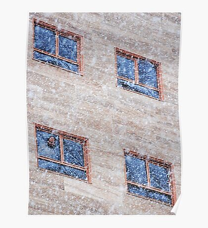 Watching the Snow Storm Poster