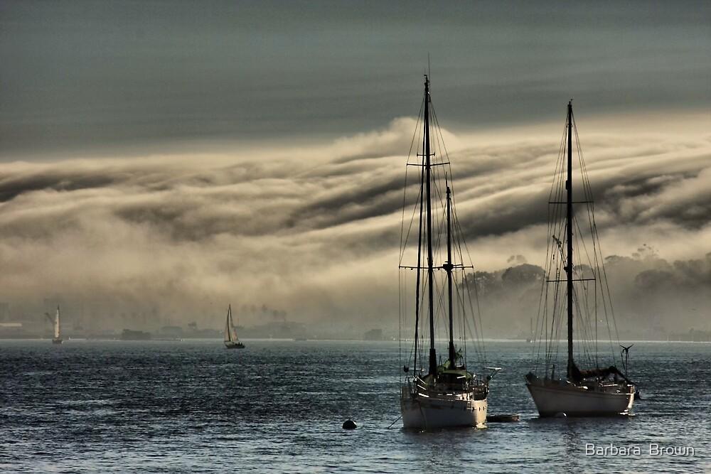 Fog Rolling In by Barbara  Brown