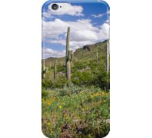 Picacho Peak State Park iPhone Case/Skin