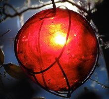Forbidden Fruit by Mark Ramstead