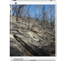 Inheritance iPad Case/Skin