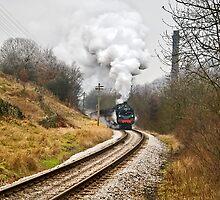 Steam Locomotive approaching Haworth by Steve  Liptrot
