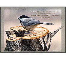 Genesis 1:22 Photographic Print