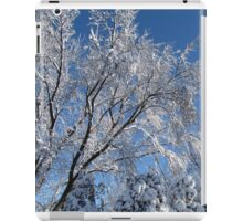 Snow Covered Trees Photograph Square iPad Case/Skin