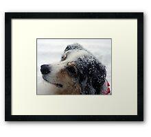 Mel in Snow Framed Print