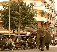 Traffic Jam Phnom Penh by Louise Fahy