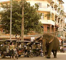 Traffic Jam Phnom Penh by Louise Fahy