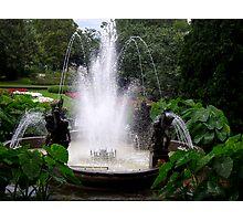 Cherubs Fountain Photographic Print