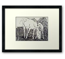 Mare and Foal I Framed Print