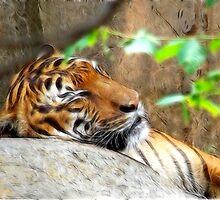 Fractalius Tiger by Glenna Walker