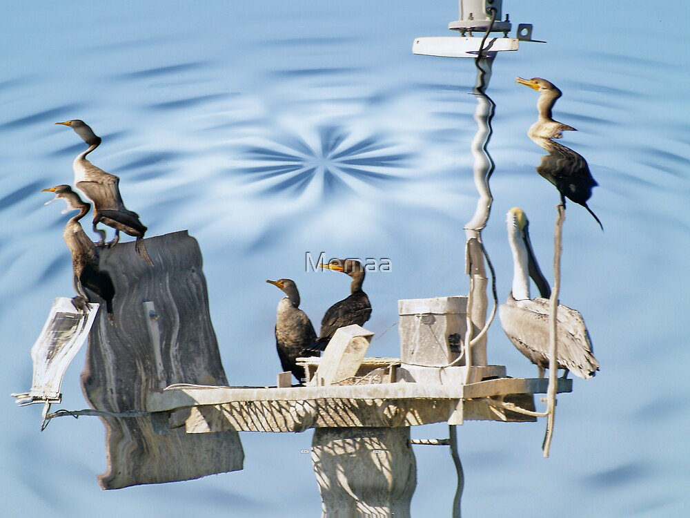 Pelican and Cormorants 2 by Memaa