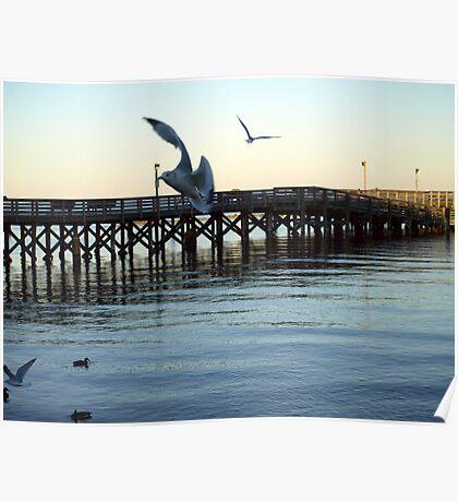 North Beach Pier Poster