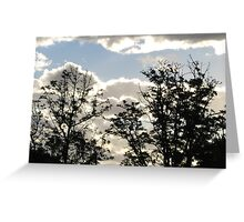 Late December afternoon sky Greeting Card