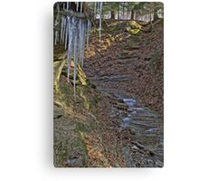 Trail #3 - Icicles Canvas Print