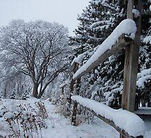 December Country by Krista Erickson