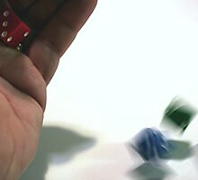 The Roll of the Dice by Stephen Thomas
