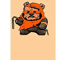 EWOK MICHAELANGELO Photographic Print