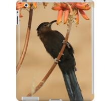 Nectar eating Amethyst Sunbird iPad Case/Skin