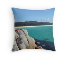 Looking over Taylors Beach Throw Pillow