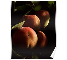 APRICOTS IN MY BACKYARD Poster