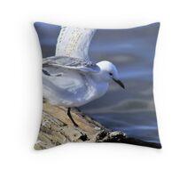 Seagull at Mornington Throw Pillow