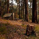 Tomahawk Hut - Mansfield State Forest, Victoria by John Bullen