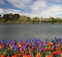Floriade by Stanton Hooley