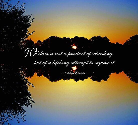 Wisdom - Albert Einstein by trwphotography
