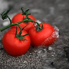 Salted Tomatoes by Crispin  Gardner IPA