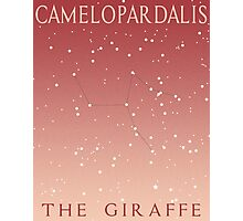 Camelopardalis, The Giraffe Photographic Print