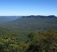 View to Mount Solitary - Blue Mountains National Park by Marilyn Harris