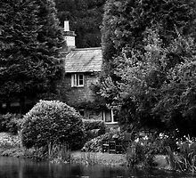 Black & White Collection - Cottage by Martin Liggett