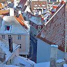Tallinn's roofs from 15 century by loiteke