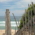 Cape Cod by Ron LaFond