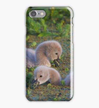 Cuteness Overload iPhone Case/Skin