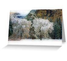 Yosemite #10 Greeting Card