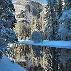 Yosemite #11 by SueAnne
