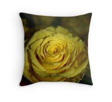 One yellow rose. Throw Pillow