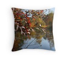 hidden pond Throw Pillow