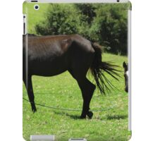 Mare and Colts in a Pasture iPad Case/Skin