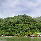 Honduras by Jasper Smits