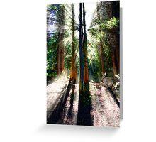 Heavenly Lighting Greeting Card