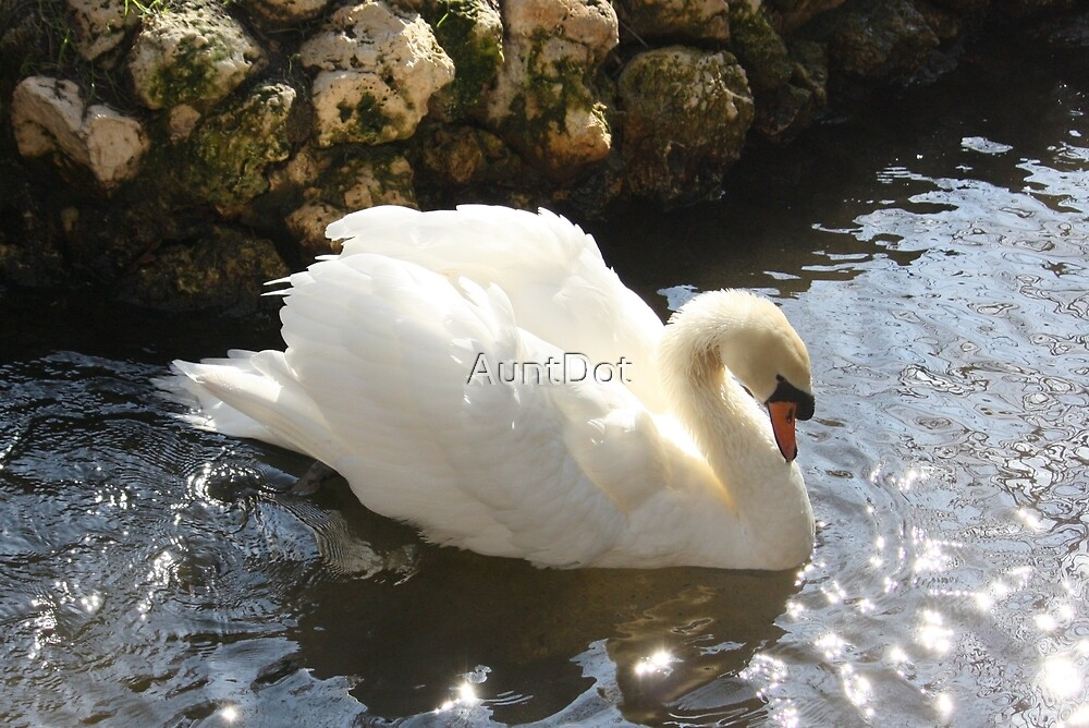 Stately Swan by AuntDot