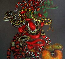 Slither by BarbBarcikKeith