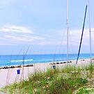 A Beach Scene by RickDavis