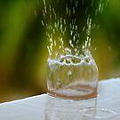 Rail Top Rain Drop by Robert Case