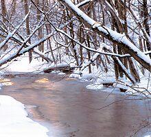 Snowy Stoney Creek by Bill Spengler