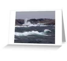 Wild Coast Greeting Card